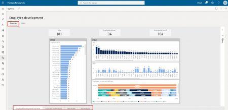 Employee development analytics
